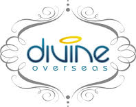 Divine Overseas - Export & Export Surplus Products Panipat Haryana India