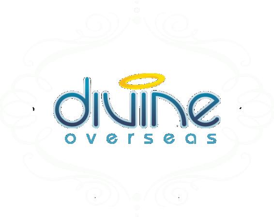 Divine Overseas   Export & Export Surplus Products Panipat